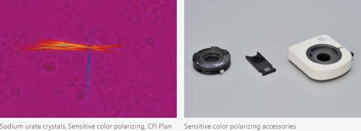 Nikon_Ci-E_colour_polarizing