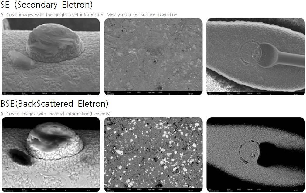 SEC_SNE_4500plus_table_top_Scanning_Electron_Microscope_image_2